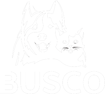 Busco Petfood